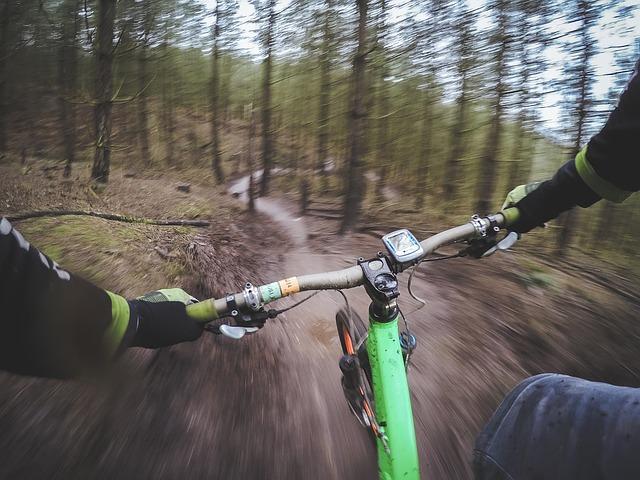 5  מסלולים לטיולי אופניים בארץ